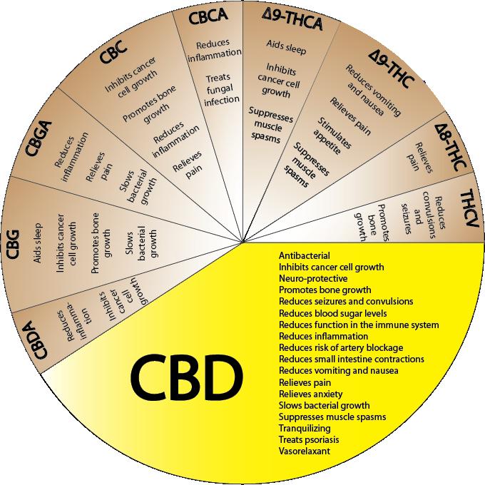 http://www.calgarycmmc.com/cannabinoids.png